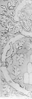 061-004キージ紋のデザイン